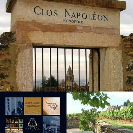 Au Clos Napoleon Photo