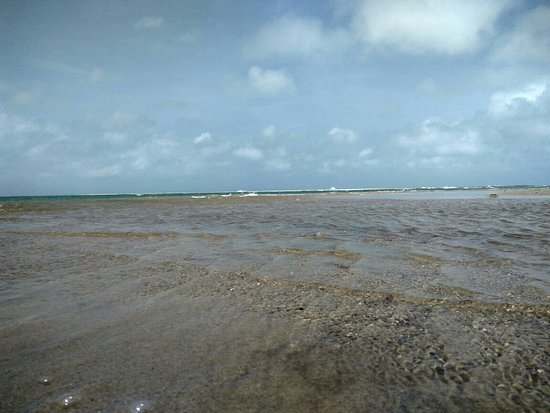 Dhanushkodi, Ινδία: Gulf of Mannar Marine National Park