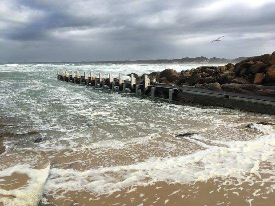Cape Conran, Austrália: Salmon Rocks boat ramp