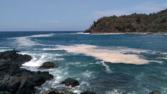 Ixtapa Island (Isla Ixtapa): Playa Coral