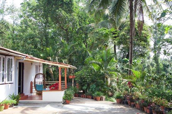 Entrance - Picture of The Blue Mountains Estate Stay, Napoklu - Tripadvisor