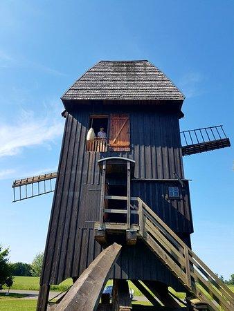 Wilhemsaue Bockwindmühle