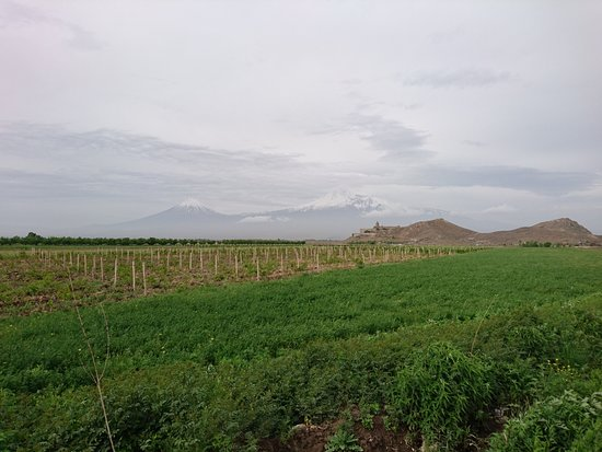 Lusarat, Armênia: 背景に雄大なアララト山が見えます。