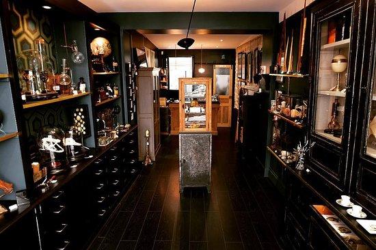 Curiositas - Cabinet des Curiosites