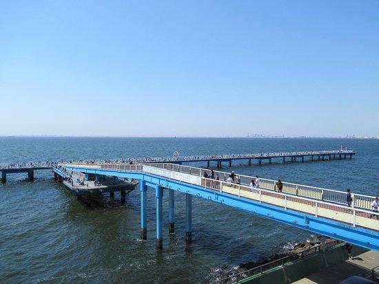 Ichihara Fishing Park: 管理棟から見た釣り桟橋