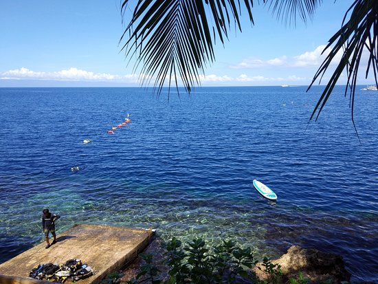Freedive Academy Panglao: View from the shore in Freedive +