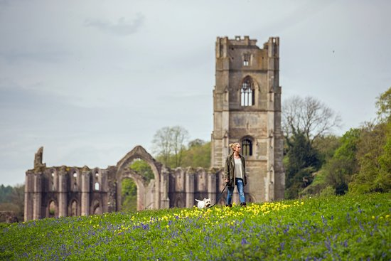 Ripon, UK : Fountains Abbey