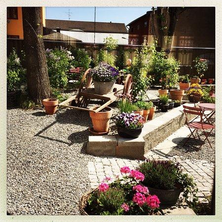 Elins Bakgård: En utrolig hyggelig café med sjarmerende bakgård, full av herlige blomster og grønne vekster.