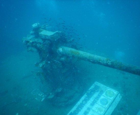 Foto de Scuba Junction Diving Co. Ltd
