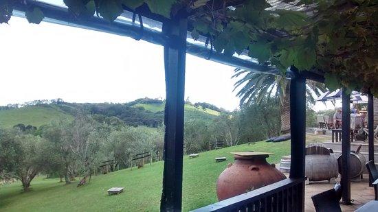 Waiheke Island: Stonyridge vineyard