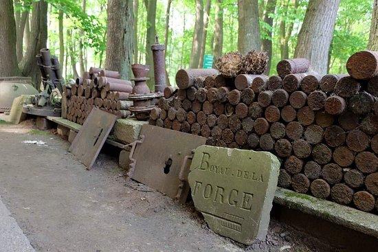 Sanctuary Wood
