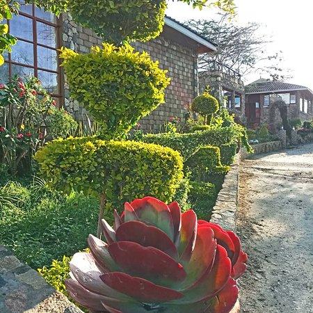 Kajiado, Kenia: The Gardens alongside walk paths