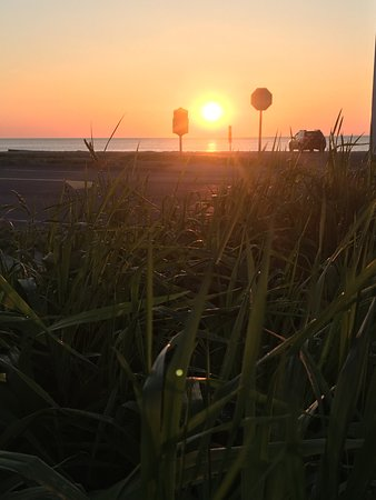 紹斯霍爾德海灘汽車旅館照片