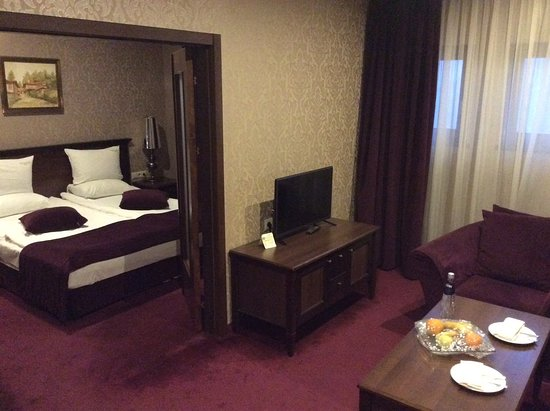 Yantra Grand Hotel: Vista del salon y uno de los dormitorios.