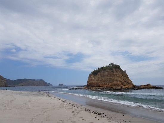 Machalilla National Park, Ekwador: Playa de las tortugas