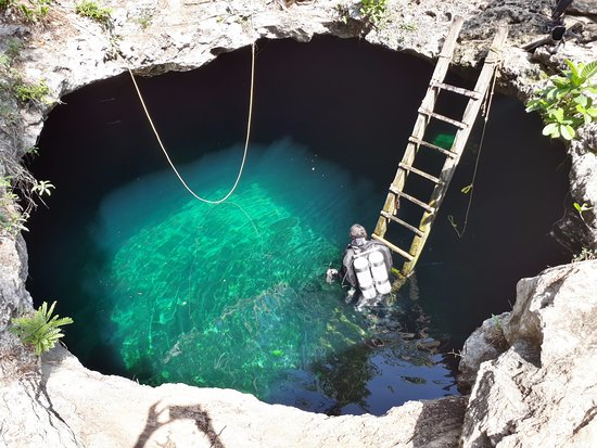Mexidivers Tulum: Cenote Calavera. Find us on instagram @mexidivers