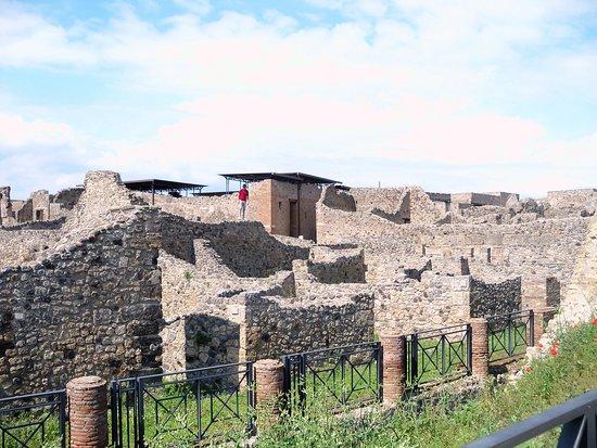 Pompeii Archaeological Park: Panorama mozzafiato...