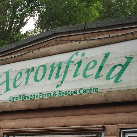 Heronfield Small Breeds Farm and Animal Rescue Centre