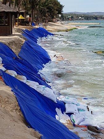 Снимок Coco Beach Resort