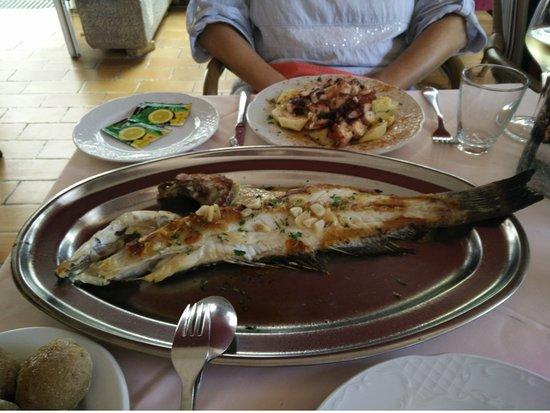 Restaurant Casa Pepe - Playa Arena Tenerife: frischer Fisch,und Pulpo