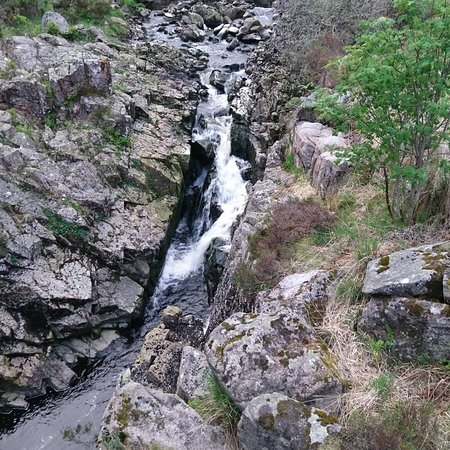 Galloway Forest Park-billede
