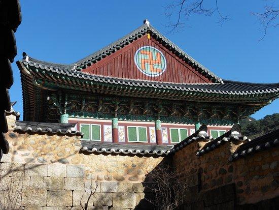 Yangnyeongsi Tourist Information Center: Cartoline da Daegu, Corea del Sud