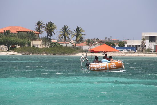 Octopus Sailing Charters: Octopus Aruba Aqua Donut Boat Fun Sun Friends Family Lunch Caribbean Blue Crystal Clear Water