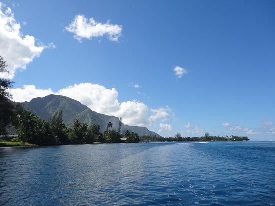 Tahiti iti Excursions照片