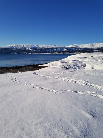 Mo i Rana, Norwegia: February - hauknesstranda