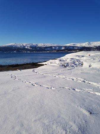 Mo i Rana, Norvège : February - hauknesstranda