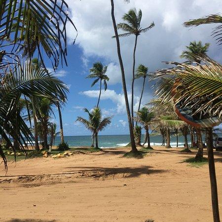 Flamengo Beach: Praia do Flamengo