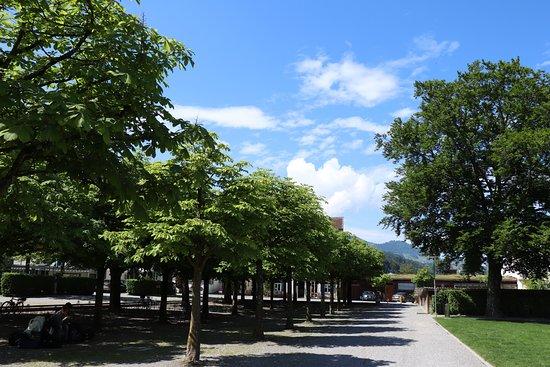 Pfaeffikon, سويسرا: こんな景色を眺めながらの食事