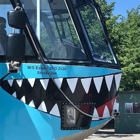 Ocean Bus: photo0.jpg