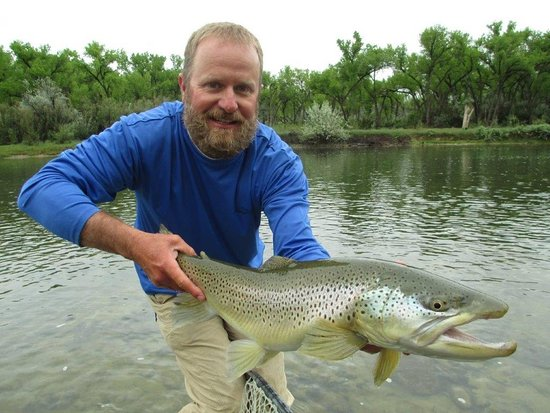 Navajo Dam, NM: Monster Brown trout in front of the Soaring Eagle Lodge, on the banks of the San Juan River.