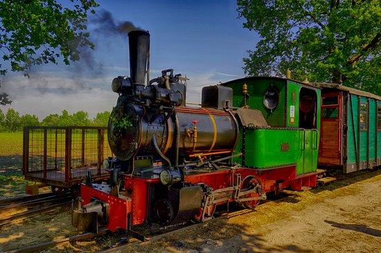 Deinste, ألمانيا: Dampflock dder Feld- und Moorbahn