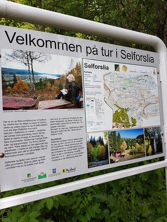 Mo i Rana, Norge: Selforslia juli 2017