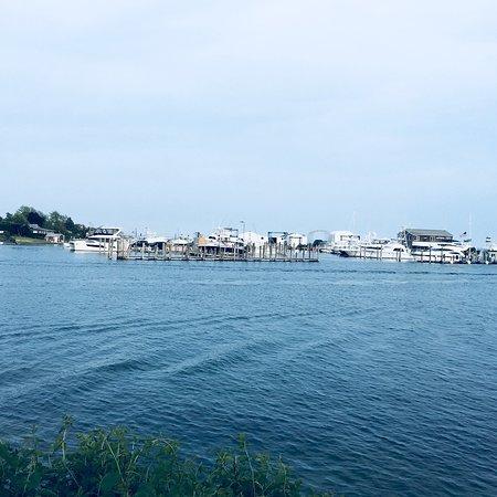 Hampton Bays, NY: Cowfish