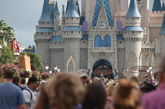 Cinderella Castle: Early Morning Castle
