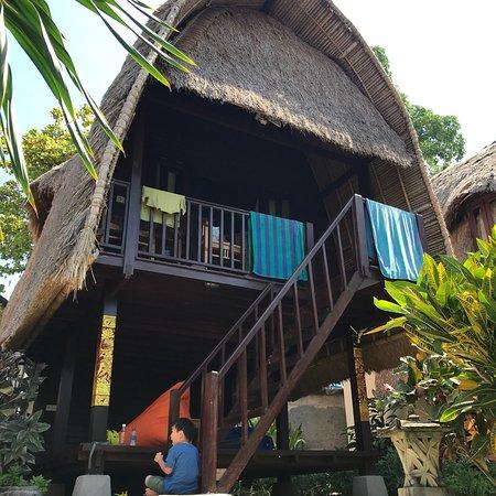 Bilde fra Molamola House