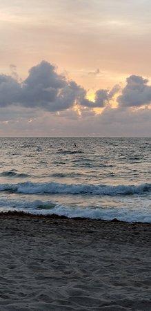 劳德岱尔堡海滩照片