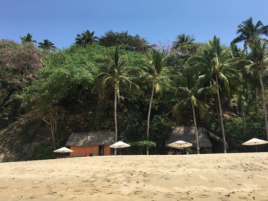 Vallarta Adventures: Private beach with lunch, hammocks and umbrellas.