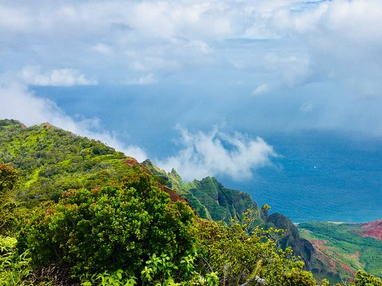 Waimea Canyon State Park: Our favorite spot with a view of the Napali coast.