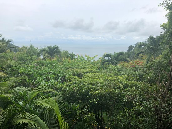 Tulemar Bungalows & Villas: View from the terrace in El Sol (Mini Suite)