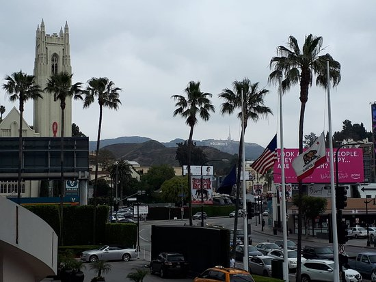 Fietstour door Hollywood