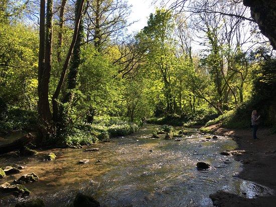 Dyserth, UK: The Falls