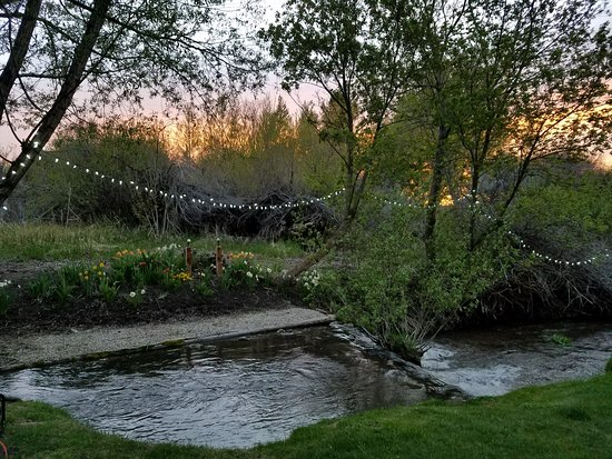 Wells, نيفادا: Trout Creek with spring flowers and lights