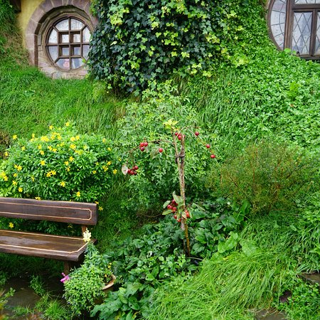 Hobbiton Movie Set: The weather was tricky on that day, yet in the end it wasn't too bad.