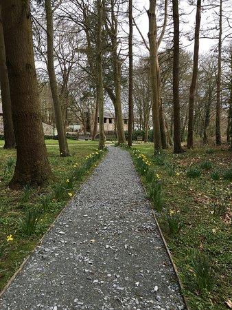 Parc Glynllifon: The Grounds