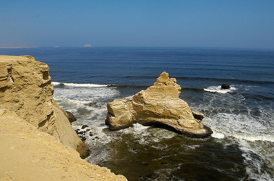 Half-Day Tour of Paracas National...