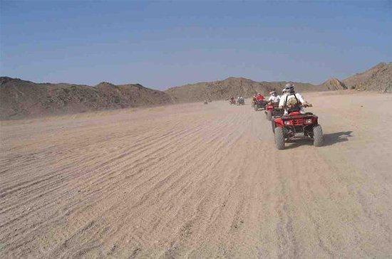 Total desert experience (  5 Safaris...